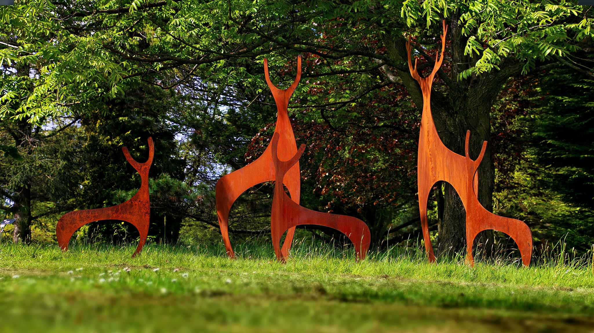 Simon Hempsell Deer Sculptures